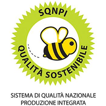 home_poderi_rosso_giovanni_sqnpi.jpg